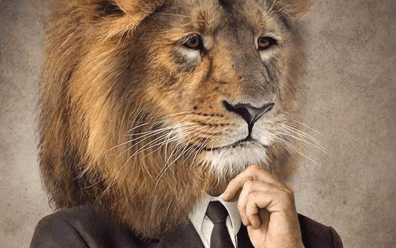 IRPF 2019 – Entenda Como Realizar A Declaração!